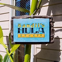 Sandii's Hula Studio サンディーズ フラスタジオ